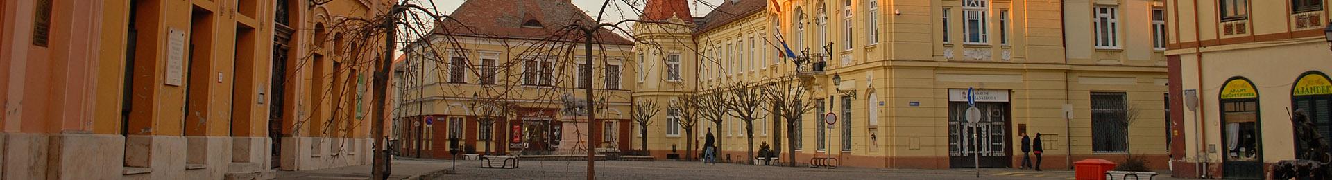 Trg Zrinskog