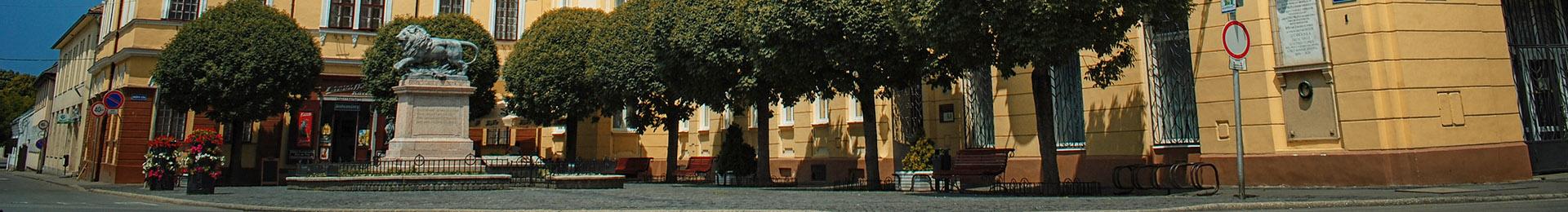 Szigetvári TDM Szervezet
